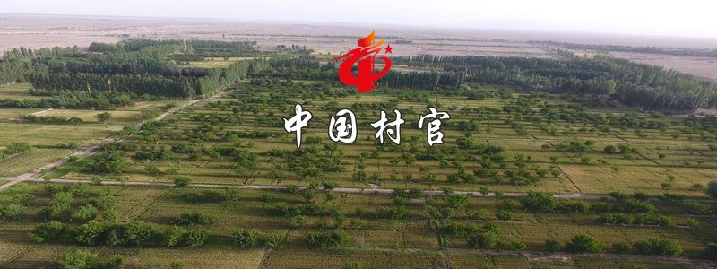 分类: <span>中国村官</span>